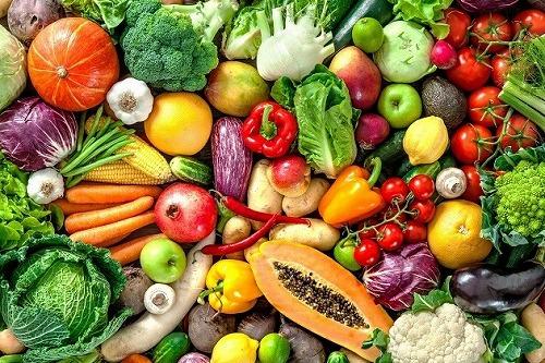 野菜乾燥機・果物野菜乾燥機・ハ...